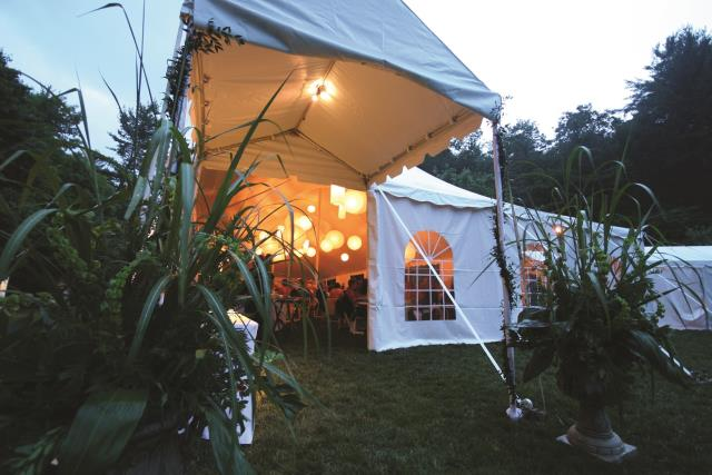 Where to find 10  x 9  Marquee Tent in Bemidji