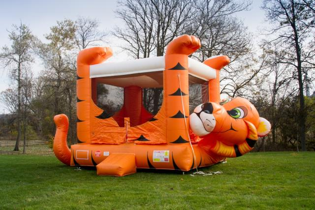 Tiger Belly Bounce Inflatable Rentals Bemidji Mn Where To