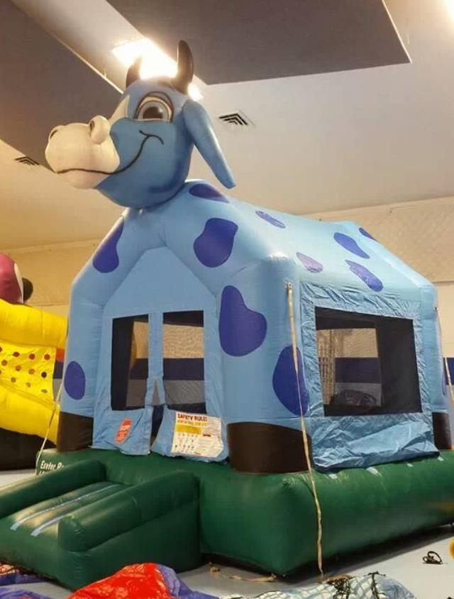 Where to find Blue Ox Bouncer Inflatable in Bemidji