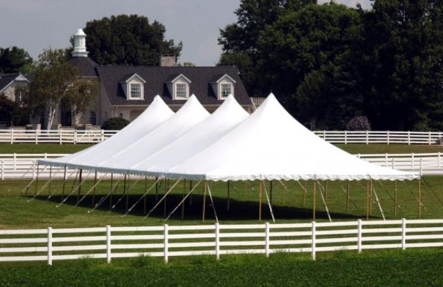 Where to find 40  x 100  Tent in Bemidji