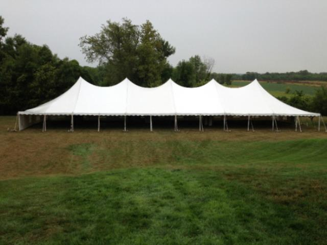Where to find 40  x 120  Tent in Bemidji