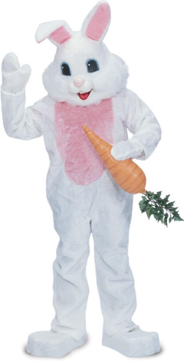 Where to find Easter Bunny Suit in Bemidji